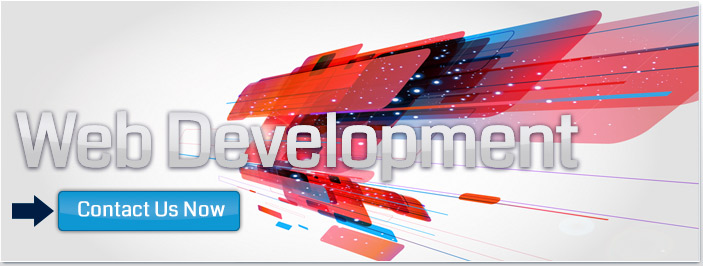 Web Owl is a website development company